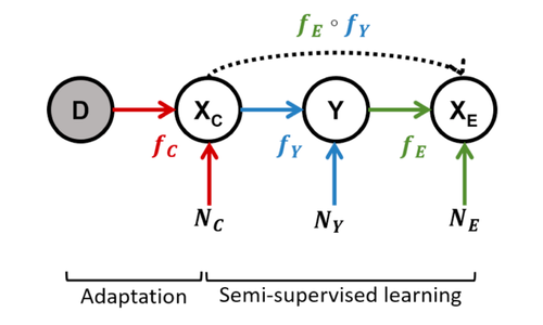 Semi-Generative Modelling: Covariate-Shift Adaptation with Cause and Effect Features